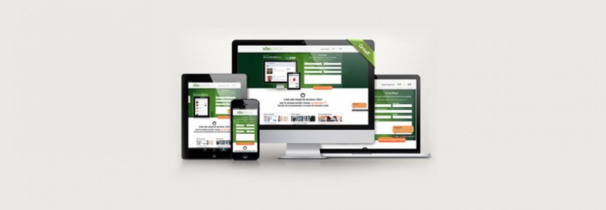 Intalnirea site ului web)